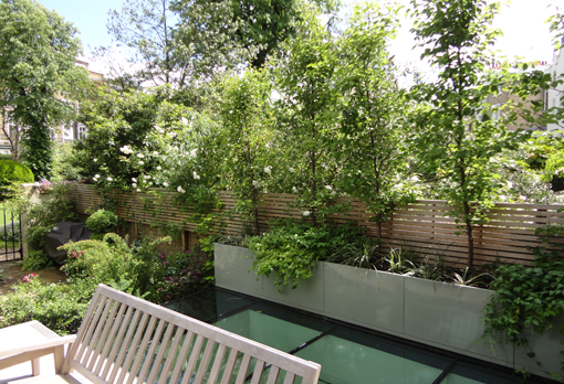 Lansdowne Crescent notting hill fencing and planting
