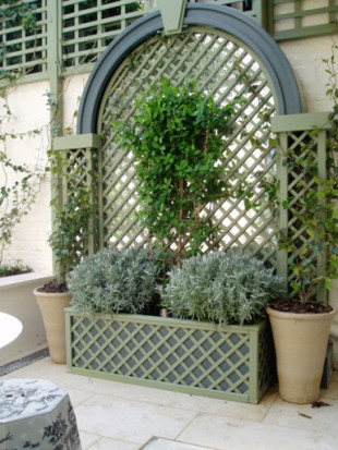 trellis feature with planters in St john's Wood