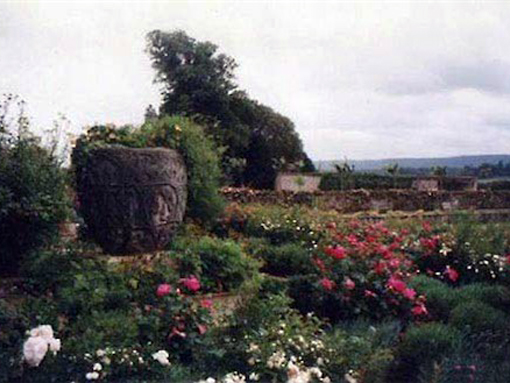gardens at the cowdray estate sussex