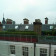 London Roof garden chelsea thumbnail