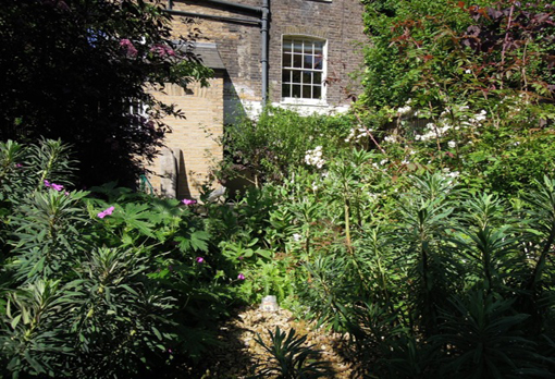 back garden of georgian house