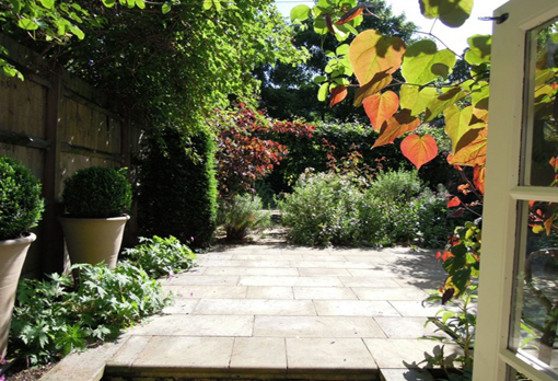 sunny paved garden with terracotta planted pot Mile End