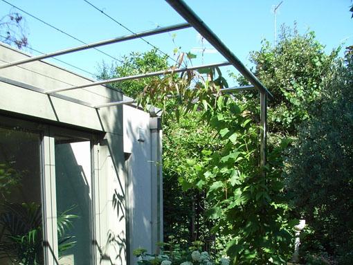 Trellis canopy Notting Hill London
