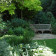 Notting Hill lush green planted garden with timber bench thumbnail