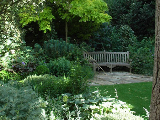 Notting Hill lush green planted garden with timber bench