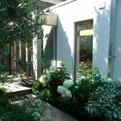 shady london garden with green and white planting