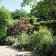 Mixed border and paving in Mile End London thumbnail